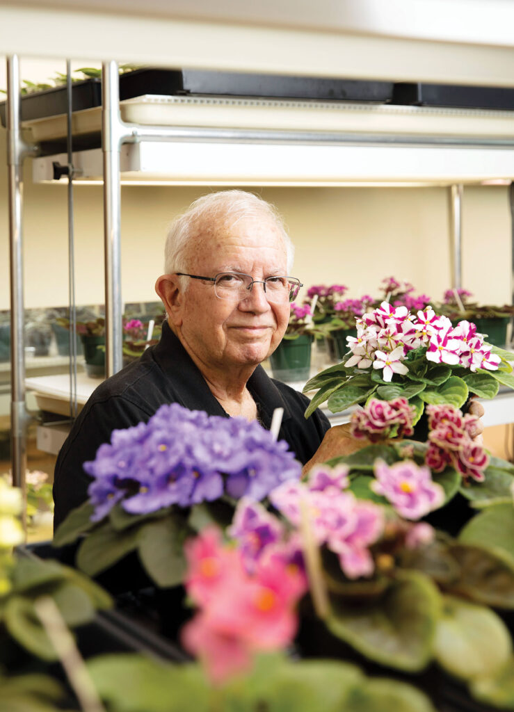 Man tending to African violets