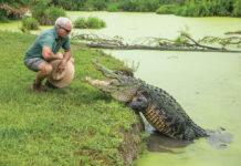 Man standing next to an alligator