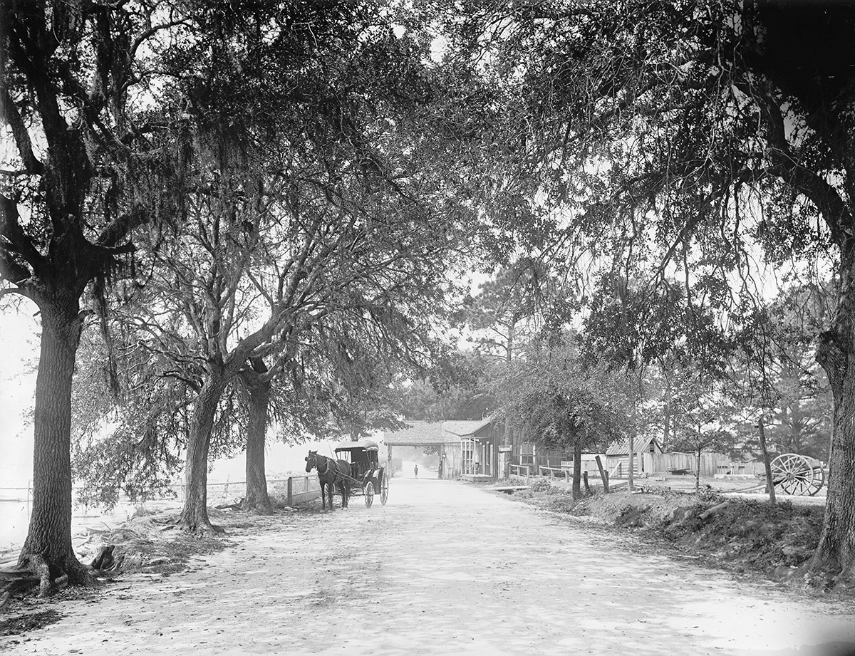 Horse and buggy on a dirt road along the water